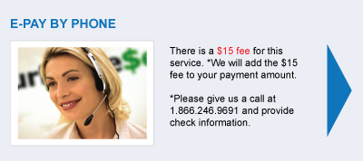 Pay Over the Phone